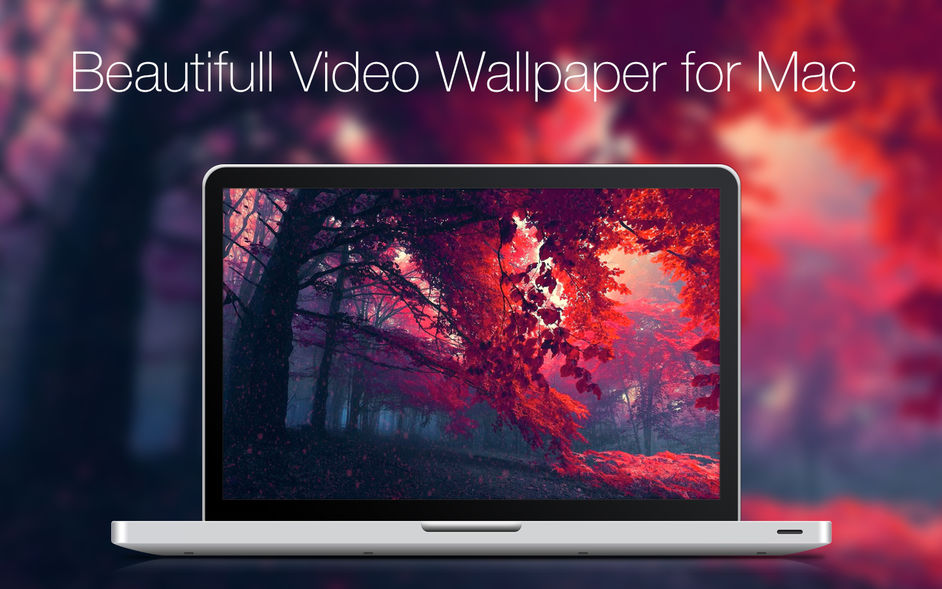 Live VideoWall for mac